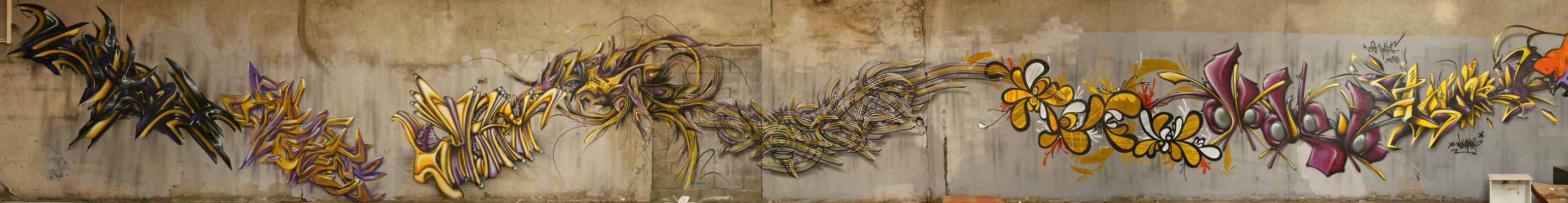 02.2009_ApashToulouse