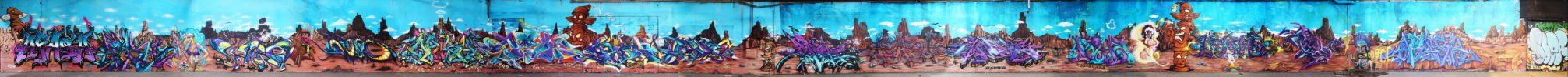 2012_12_Toulouse_Fresque_Apashe
