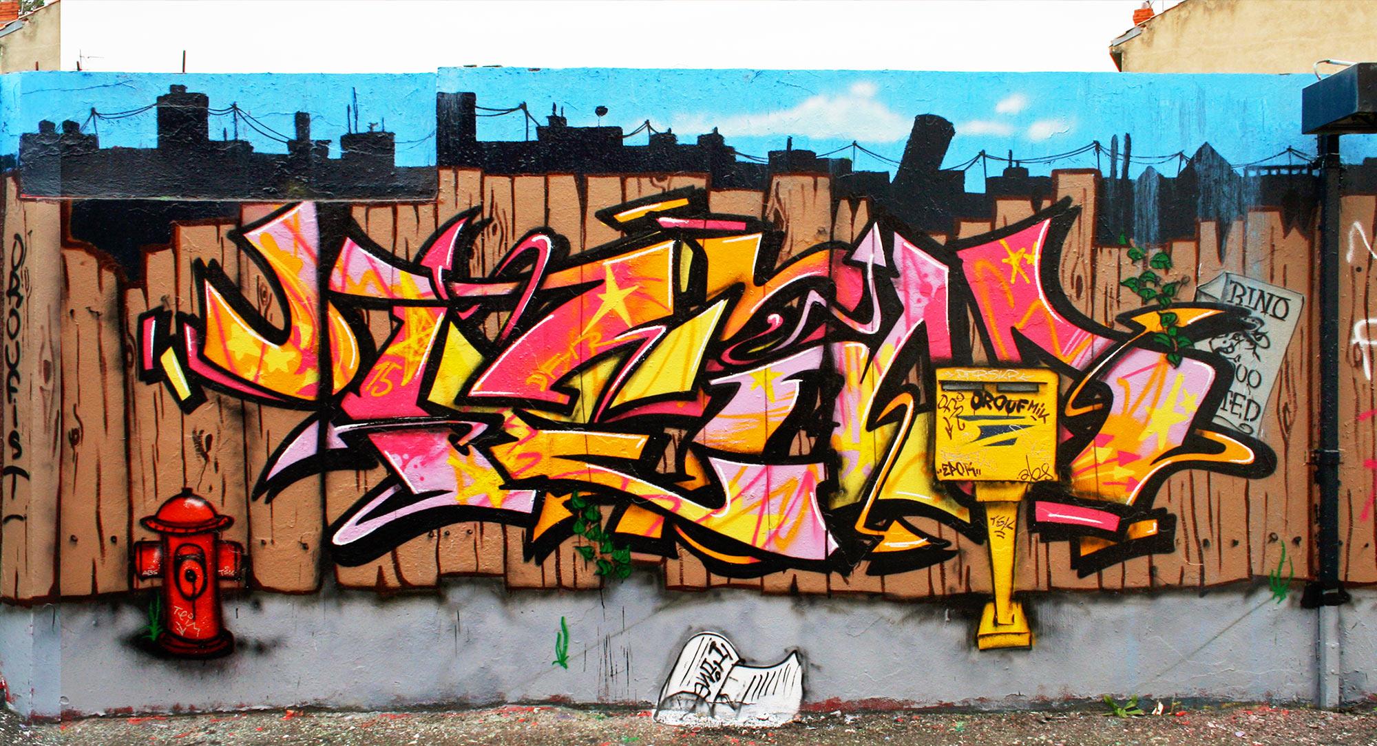 Teim- Fresque Pallissade - Graffiti
