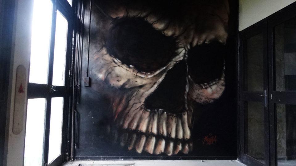 Vanité - Fresque - Street Art City - Lurcy Levis