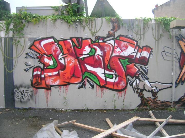 Helf - Fresque Jungle - Graffiti - Clermont-Ferrand