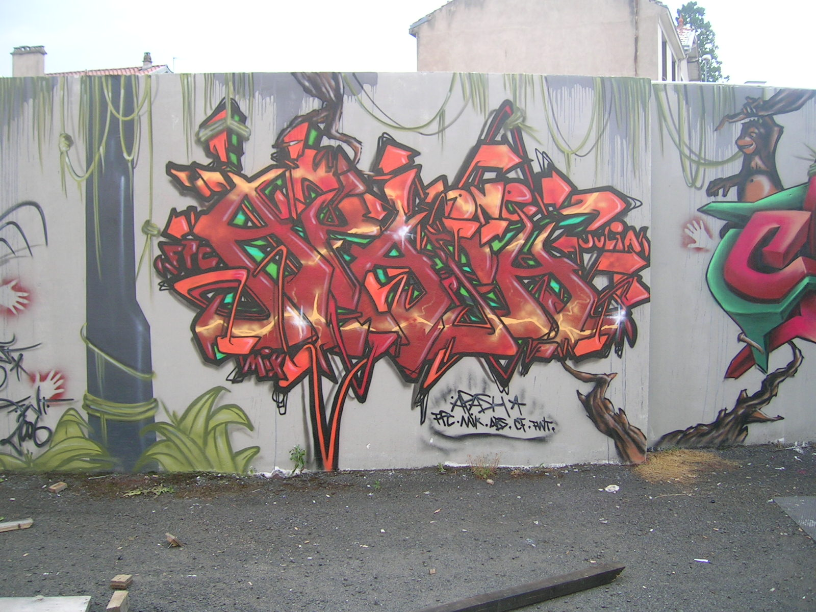 Apashe - Fresque Jungle - Graffiti - Clermont-Ferrand